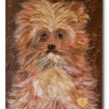 Hart_Ellen_Fluffy_Dog_Acrylic-on-Canvas